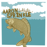Aaron Sprinkle - Lackluster